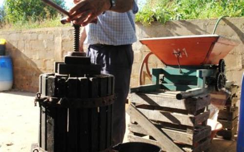 Manuel Marcelino mostra o moinho e a prensa para vinho. © Município de Tavira 2014