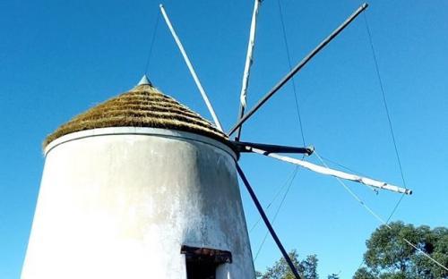 Moinho de Cachopo. Janeiro de 2019, aldeia de Cachopo. © Município de Tavira