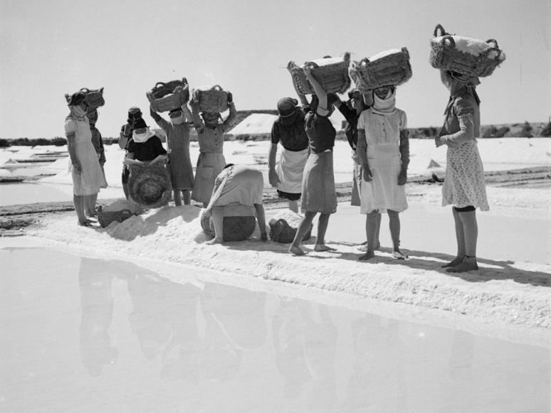 mulheres recolhendo sal